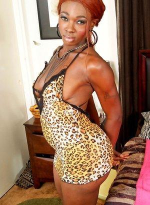 Ebony Tranny Pics